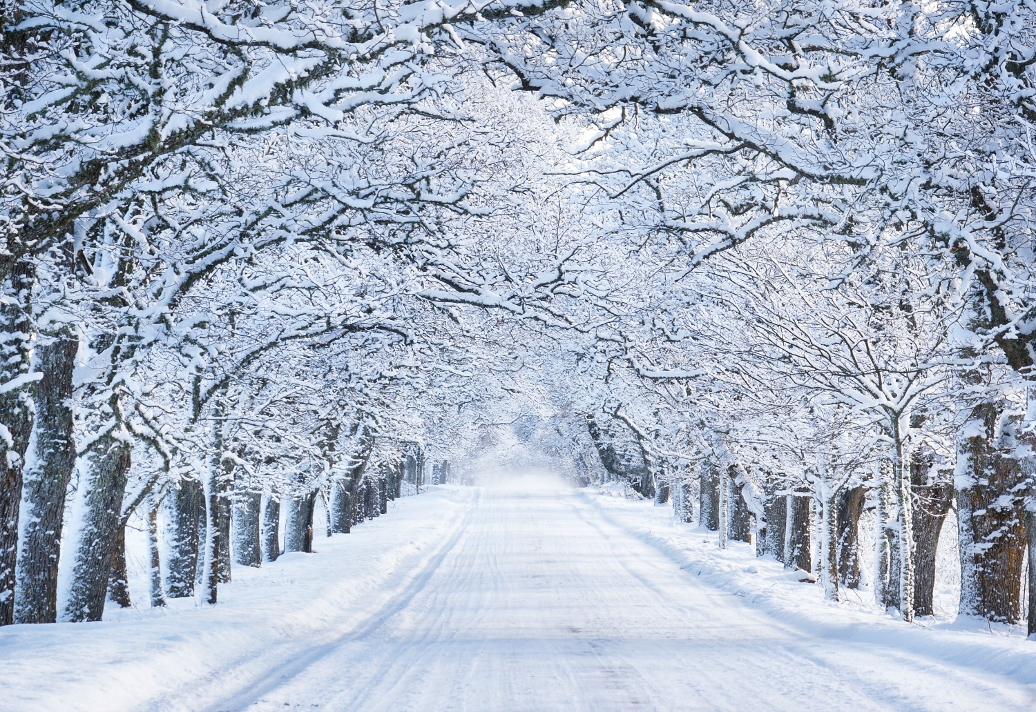 winter-road-scene-low-res