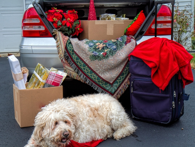 Packing the trunk for holiday travels